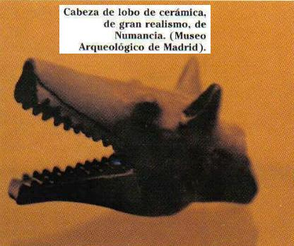Cabeza de lobo de Numancia hecha de cerámica manificamente ejecutada.